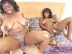 Ebony girls suck white dick and get laid tubes