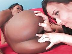 White girl licks black lesbian asshole tubes