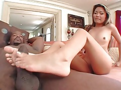 Bbc pummels asian pussy with deep thrusts tubes