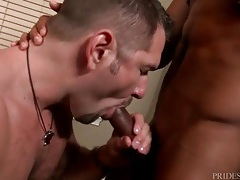 Black and white hunks suck dick in lusty porn tubes