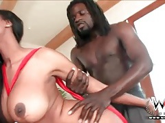 Black babe with big fake titties loves anal sex tubes